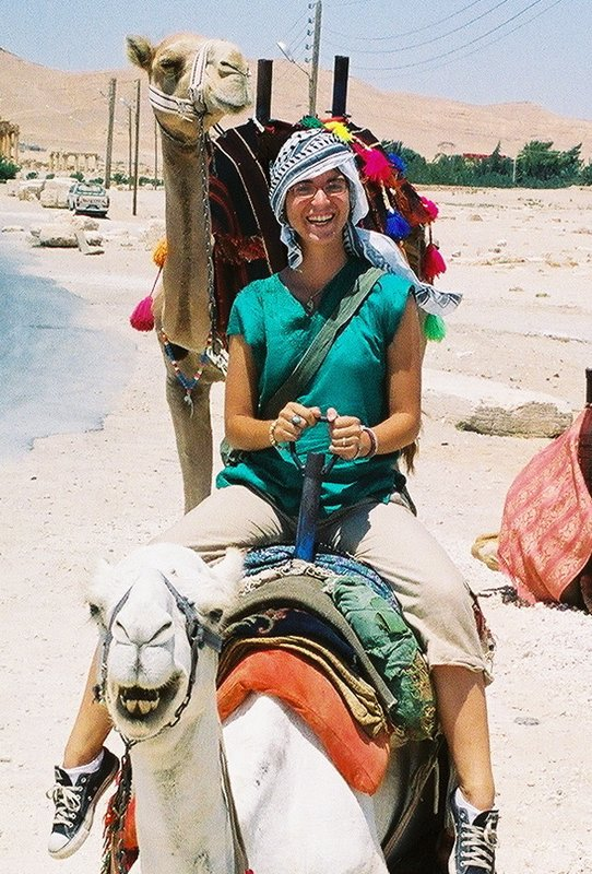 Syrian Camel