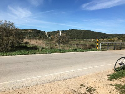 0690_wed_b.._steep_road.jpg