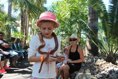 Snake holding at Crocodylus Park