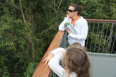 Daintree viewing platform