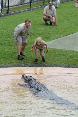 Robert Irwin feeding the croc