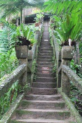 Paronella Park Stairway