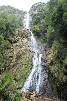 Montezuma Falls - the longest waterfall in Oz