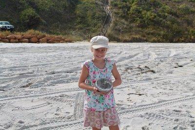 Albany beach sandcastles