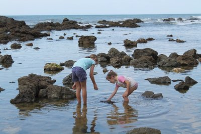 Checking out the rock pools