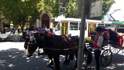 Horse and cart in Melbourne central