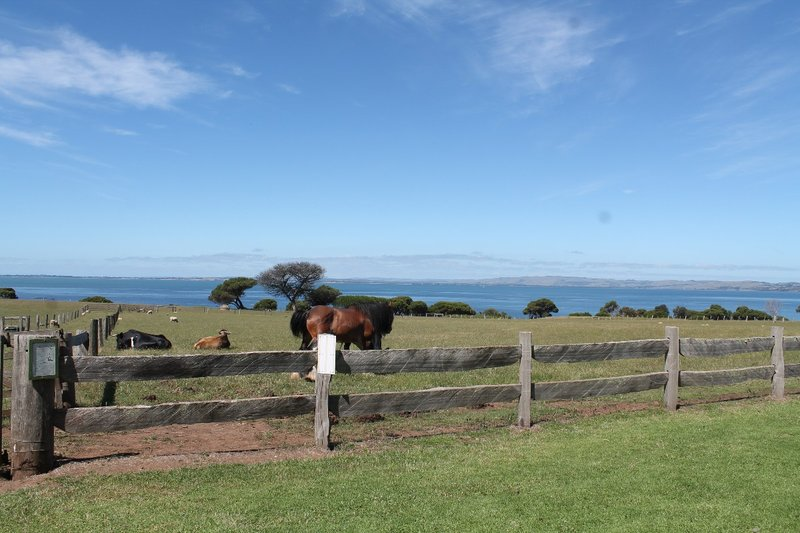 the view from the Churchill Farm