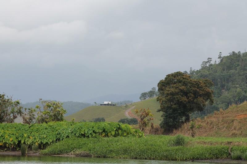 View of Atherton Tablelands