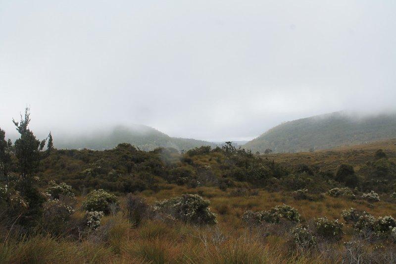 Wombat Lake view