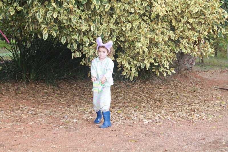 Easter hunt time!