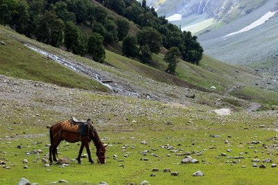 Sonamarg Valley
