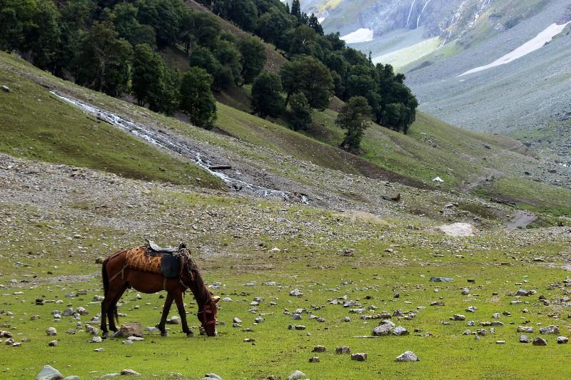 Sonamarg Valley