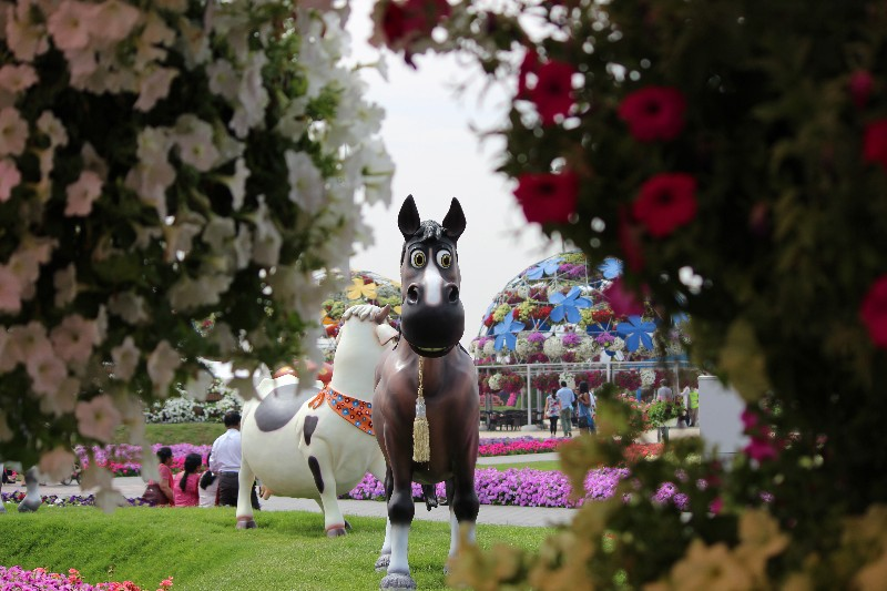 Horse peeping through a bush of flowers