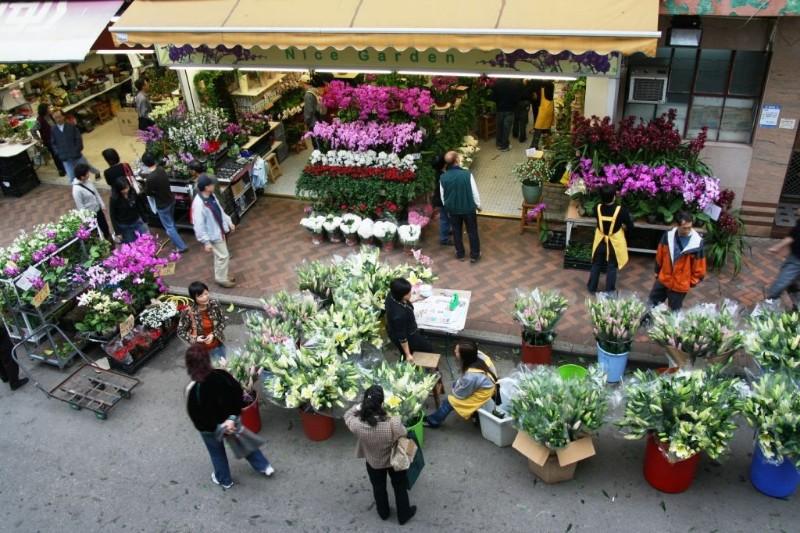 large_flower-market.jpg