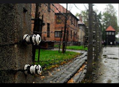 auschwitz_fence.jpg
