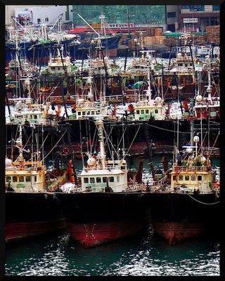 busan_boats.jpg
