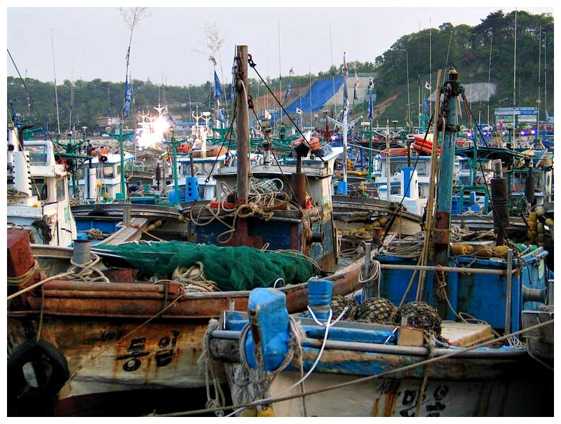 Sokcho Fishing Port