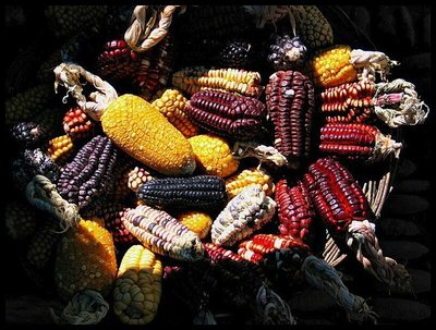 perucorn-food.jpg