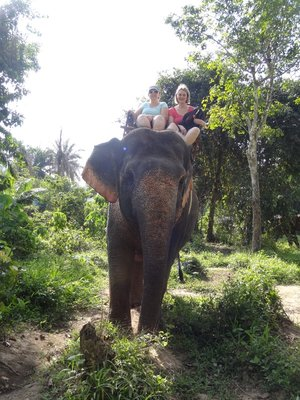 Elephant riding in Thailand