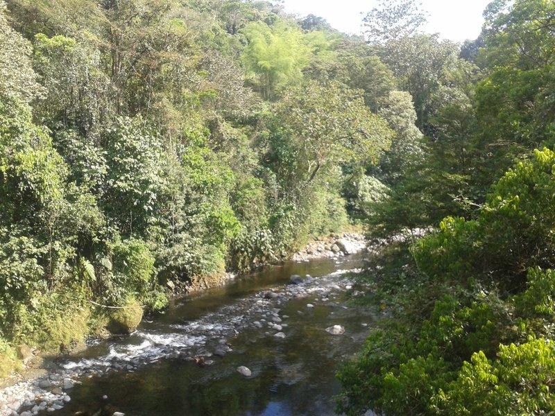 Gariche River. Chiriqui, Panama
