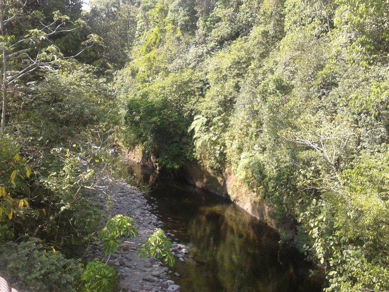 Gariche River, Chiriqui, Panama.