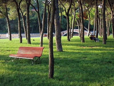 Venice Park