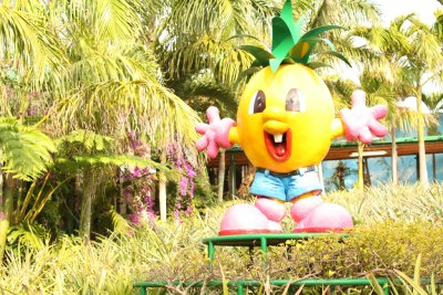 Pineapple Park