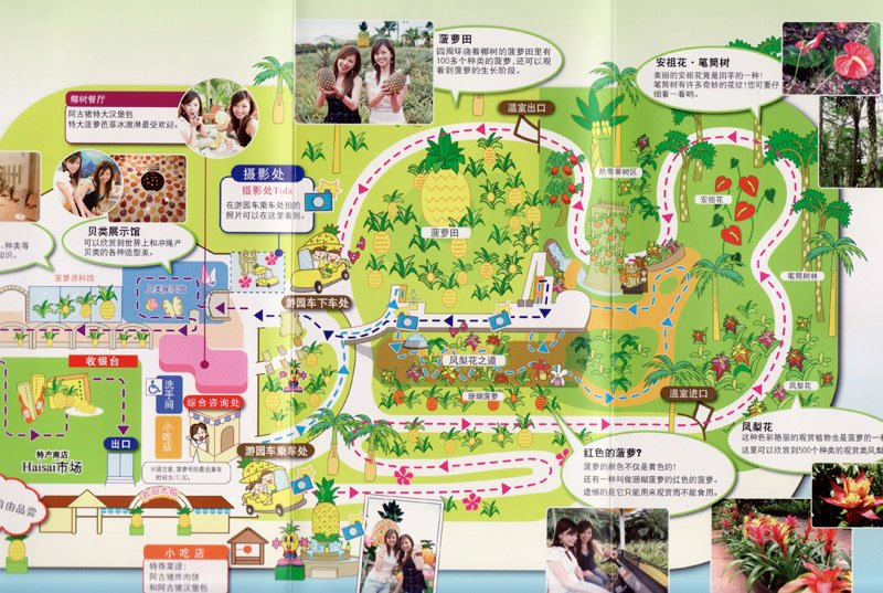 The Map of Pineapple Park