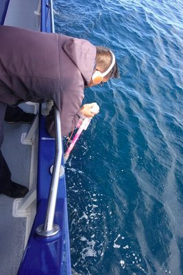 Listening for whales - with this homemade device this guy located two whales for us to see #grateful
