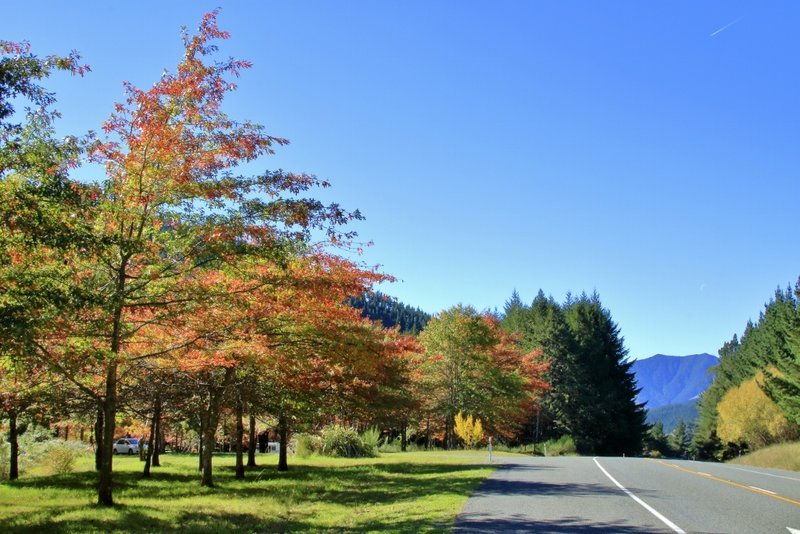 Autumn arrives in Motueka, New Zealand