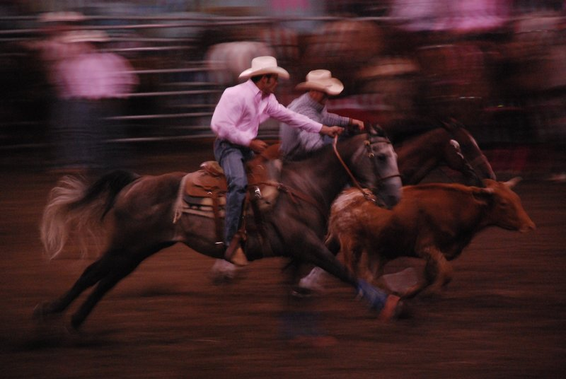 Jasper Rodeo