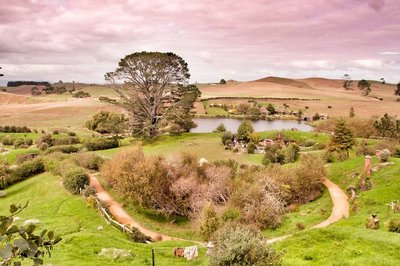 Hobbiton_and_Mauri_23-01.jpeg