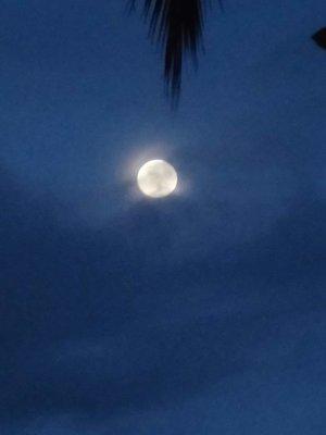ful moon