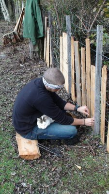 Smithy helping Thomas with the fence