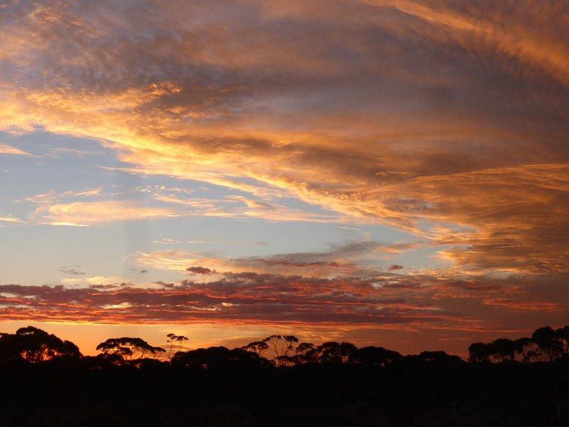 Mallee sunset