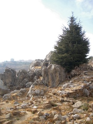 Landscape near the Roman Temple at Kfardebian , Mount Lebanon