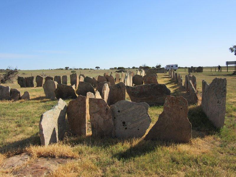 Pergande Sheep Yards