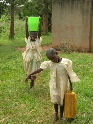 sabina home water dragen