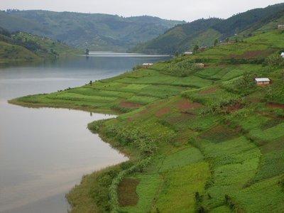 uga_lake buyoni