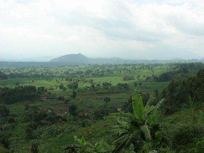 Rwanda_green landscape