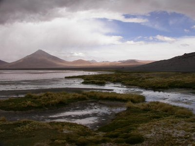 salar_dark landscape