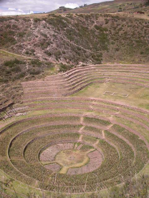 Moray_Inca Gardens