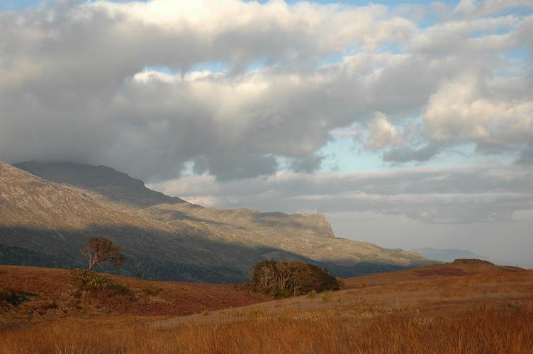 malawi_mulanje highlands