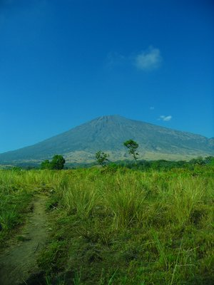 rinjani from the meadows