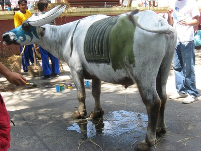 painted carabao