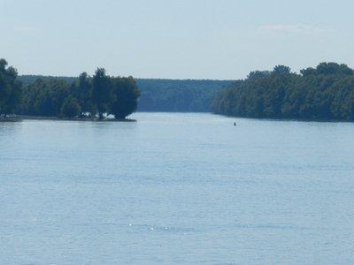 Mündung der Drau in die Donau