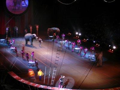 circus29