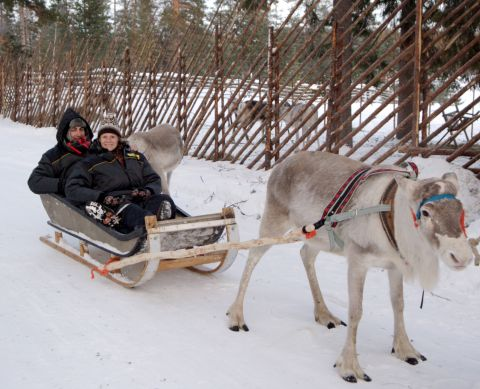 Liara & I on a reindeer in Lapland