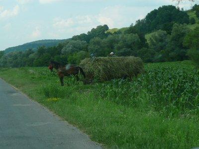 haycart