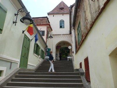 jane Sibiu